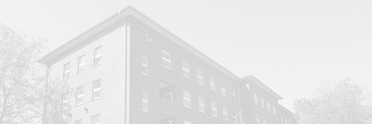Haus (blass)